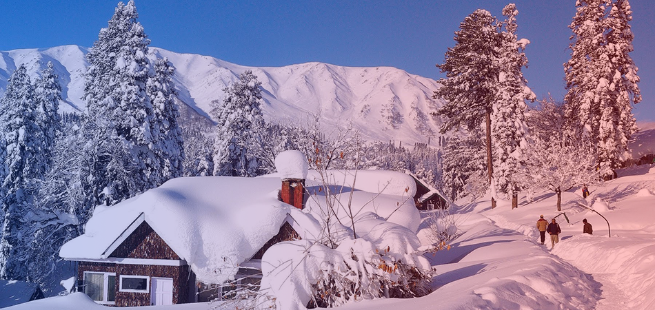 must do things in auli letusgoto travels