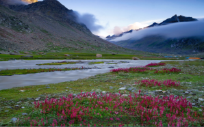 The ultimate guide on Hampta pass trek